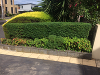 Gardening business for sale that comes with regular customers covering the South Eastern suburbs from...