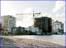 The view from Cotton Tree to Duporth Avenue, buildings of up to 20 storeys may reside. Photo: Anthony Reginato