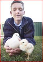 Wayne Bennett with his dove and chicken.Picture: SCOTT FLETCHER