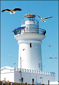 South Solitary Island lighthouse keepers cottages have stood abandoned for the past 30 years