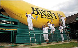 Sprucing up the big banana. Photo: BRUCE THOMAS 041001A