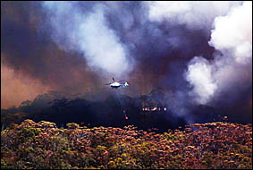 BOMBSAWAY:A helicopter waterbombs the fire at Cabarita  yesterday, as nearby residents were evacuated.