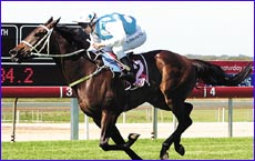 Rubi D'Amour strides ahead to win Race 3 at Corbould Park yesterday.