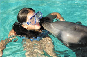 Dreams can come true . . . Caitlyn Botello frolics with Bucky at the Coffs Harbour?s Pet Porpoise Pool.