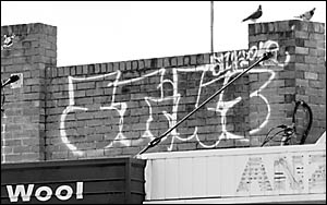 The vandals climbed roofs and placed the word ?stiks? on just about any space available.