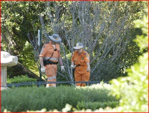 SES members search Laurel Bank Park. Picture: NEVILLE MADSEN