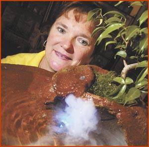 Sue Blackmore (of Bansai-Sue fame) made the trip to Gardenfest last year fromAllora. Picture: SCOTT FLETCHER?