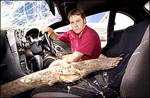 CLOSE CALL: Rohan Williams shares the front seat of his car with the tree branch that pierced his front windscreen