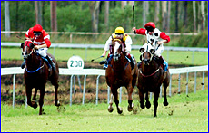 Craig Beets (right) rides Reconsider to win by a length in race two at Calliope yesterday.