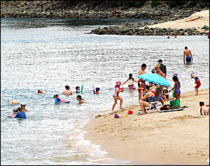 SHARK PATROL: Swimmers in Currumbin Creek this week were doing the right thing by swimming in a patrolled area.