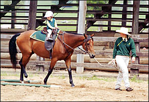 SOMETHING FOR EVERYONE: Siobhon Hoy, aged only 27 months, is led by Kelli Sutherland at the 2003 FNC Branch show.