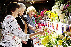 Admiring the display of flowers, from left, Kaye Bryant, of Tooloom, Fay Donovan, Tooloom, and Vi Hobbs, of Urbenville.