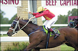 Cyril Small, riding Caravanserai and wearing the family colours, shows his delight in winning the 1400m race named in memory of