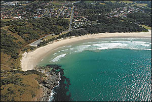 Coffs Harbour?s shearwater and muttonbirds are taking to the sky for their 5000km migration to the Philippines.