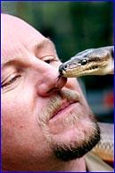Tony Harrison gets close to Kalamata, the olive python.