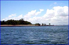 This 33 acre island, which has no name, is up for sale only 15 minutes from Gladstone.