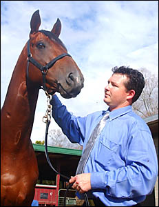 Grafton Cup favourite Stormhill with stable foreman Brad Herne yesterday.