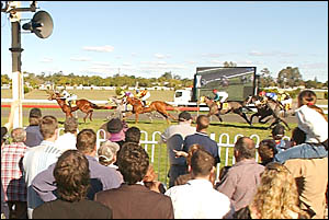 Punters crane their necks to get a better view of the finish of the Ten Network Two-Year-Old Plate over 1200m. Native Wolf scor
