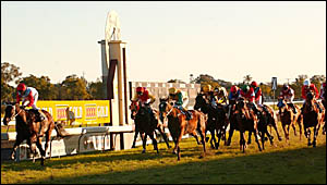 Horses pass the post in the Maclean Bowling Club Maclean Cup at the Grafton racecourse on Sunday. The race was won by Forestren