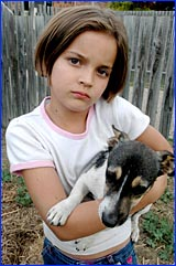 Brooke Goodwin, 7,  is consoled by her pet dog Eric after her pet cat was killed.