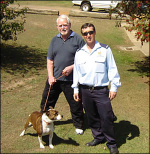 HITCHING A RIDE: Staffordshire terrier Billie with her owner Dave Parkin- son, left, and Clarence Valley Council ranger Dave Dr