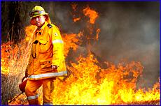 Fire warden Alistair Chapman backburns along the Dawson Highway  towards Biloela in an effort to control a wild bushfire.