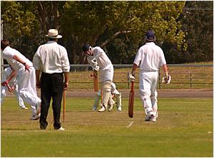 Brothers batsman Trevor White