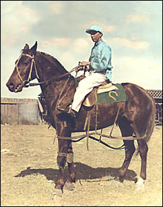 Jack Mills riding Bouncing Bell and clearly displaying the big buckjump saddle. The photo was taken shortly after horse and rid