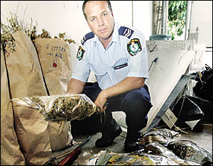 SENIOR Constable David Bell of Tweed police with some of the drugs, money and gun that were seized in the raid.