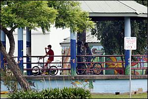 Murwillumbah's Knox Park