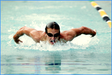 NO CHRISTMAS PUD: Maroochydore's Nick D'arcy is training for the Commonwealth Games.