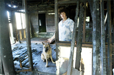 Anne Aboud and pet german shepherd, Tobi, have lived in this home and an adjoining train carriage for almost a year.