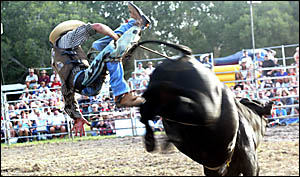 DANNY Bederas comes to grief in the novice bull event.