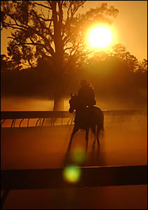 Early morning trackwork and golf don?t mix, despite the proximity of the Westlawn course and horses at Grafton.