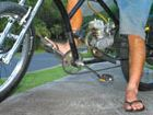 Petrol-powered bicycles outlawed, some electric bikes okay