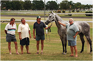 LAST HOPE: From left Gary McCormick, Eddie Clack, trainer Bruce Swan and co-owner Ron Skinner with horse Skinz Hope.