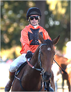 NOT THIS TIME:Allan Robinson returns to scale at Grafton yesterday after finishing third.