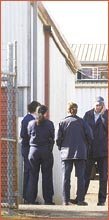 Officers at yesterday's raid in Drayton. Image: NEVILLE MADSEN