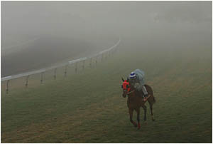 LOCAL hero Starlactic emerged through his final, fog-bound gallop at Grafton on Saturday morning with flying colours.
