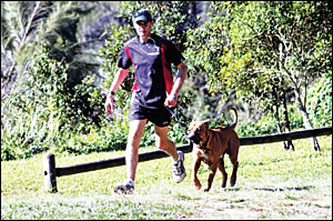 Jet, the ridgeback cross mastiff, can barely keep up with bone marrow transplant survivor Rob Gale as he trains for this year?s