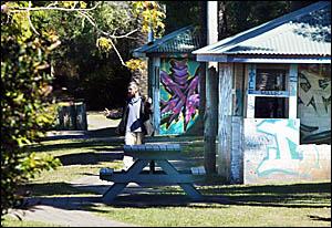 MIDDAY yesterday: A man walks through Murwillumbah?s hidden riverbank park near the scene of a stabbing on Wednesday.   Pi