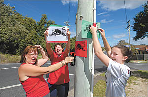 Panthers supporters Sharron Sharp and Alahna and Jacqui Hey paint the town red, white and green.