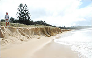 Fancy a clifftop walk? Dennis Meagher looks at what remains of Sawtell Beach. Photo: BRUCE THOMAS 06091301A