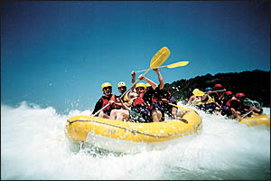 Years of drought have proven trouble for whitewater rafters, now other coast ecotourism operators are doing it tough as well.