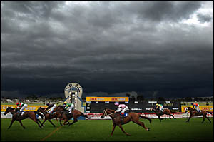 Black clouds roll in as the field passes the post in yesterday?s Jacaranda Cup in Grafton. The meeting was abandoned after the