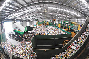 Trucks deliver the tonnes of extra Christmas recycling to the Materials Recovery Facility.