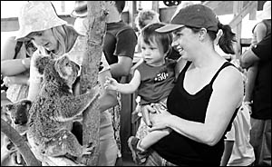 Zander and Karina Burbidge, of Emerald Beach, were at the Coffs Harbour Zoo yesterday to see and touch the animals and listen t