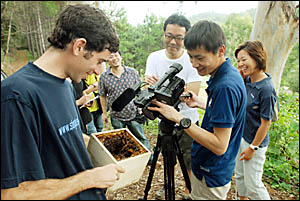 William Archer and his native bees spent yesterday performing for a visiting Japanese TV crew.