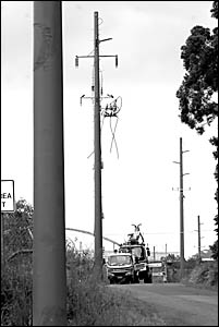 Sapphire residents are not impressed with the visual pollution of all these power poles. One resident describes them as ?sticki