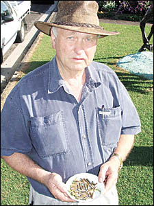 Bert Elliott holds some of the 350 live bullets that were found scattered on the front lawn of his Ballina business. The bullet
